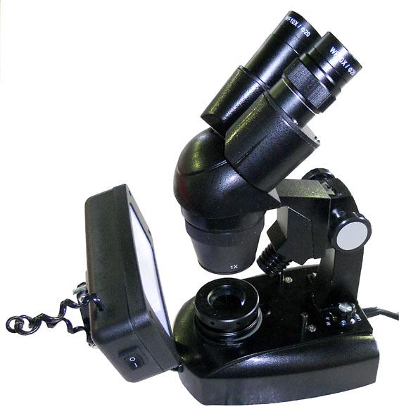 microscopio stereoscopico campo scuro